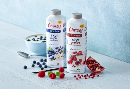 er yoghurt sundt