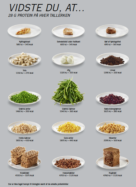 kikærter protein